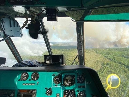 Ситуация с лесными пожарами в Югре стабилизирована