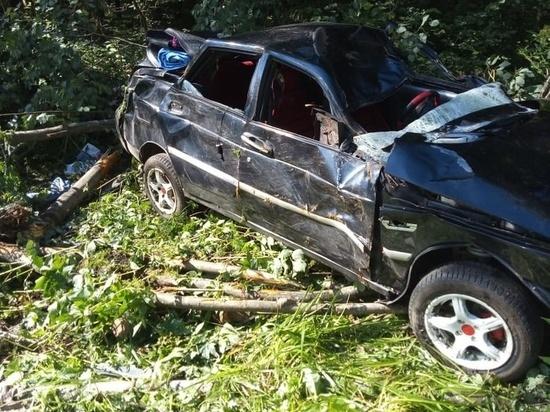 Во Владимирской области автомобиль столкнулся с лосем