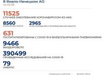 Положительная тенденция на Ямале: выздоровевших от COVID-19 в разы больше заболевших