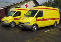 Аптечки «скорой помощи» предлагают оснастить новым противовоспалительным средством и антибиотиком