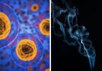 Онколог определил фактор, который повышает риск развития рака в 30 раз