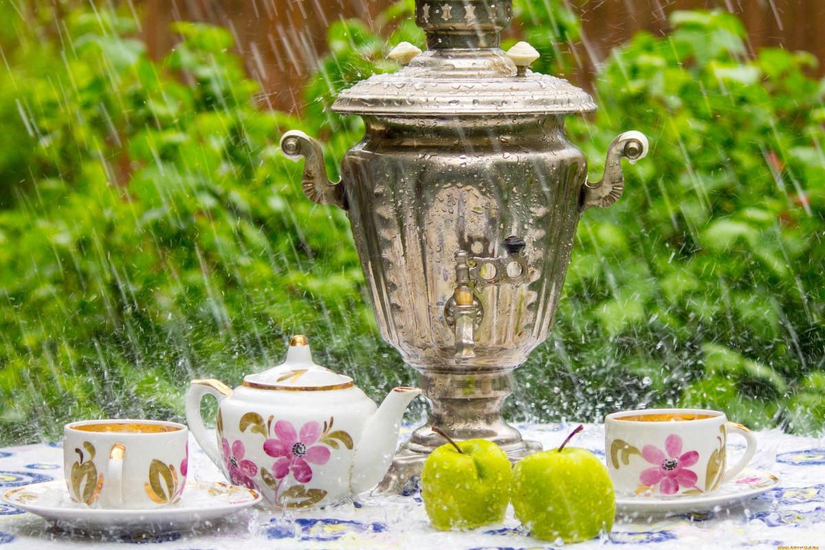 Тепло и мокро: погода в Новосибирске в пятницу - МК ...