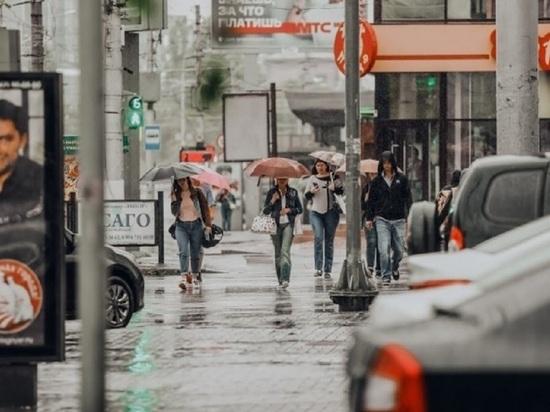 Волгоградцев 7 августа ожидают небольшие дожди с грозами