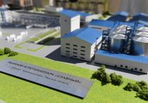 Технопарк в области льноводства появится в Тверской области