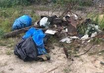 Чиновники из Салехарда очистили от мусора берег Полуя