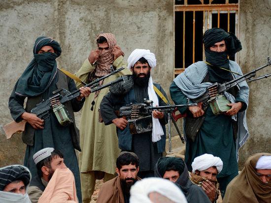 Талибы опровергли сообщения о сговоре с Россией против США