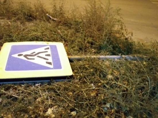 Костромские общественники дорожного контроля свалили дорожный знак