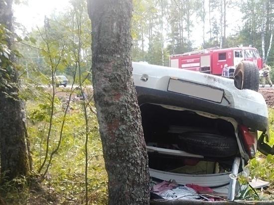 ДТП с участием легкового автомобиля произошло в Себежском районе