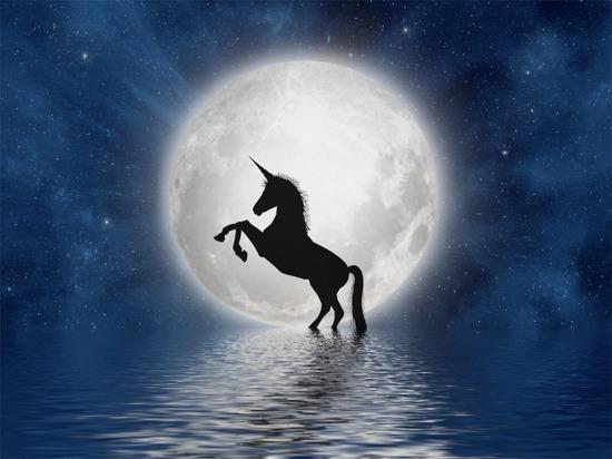 Луна в Овне. Такой день лучше всего провести в уединении