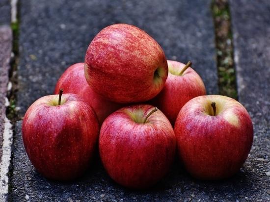 Врач рассказал, почему нельзя есть много яблок