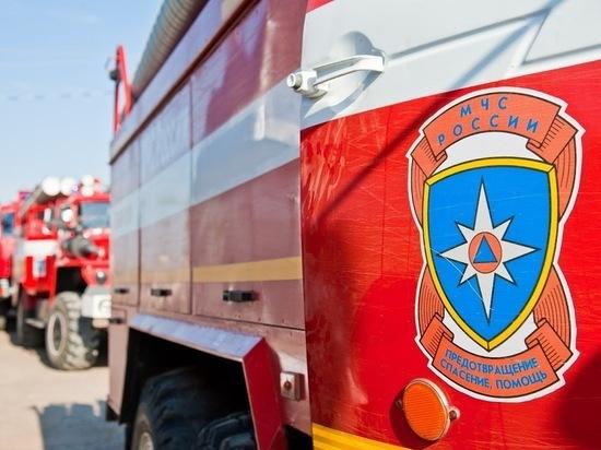 В Волгоградской области пожарные почти час тушили сено