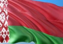 Созданный ЦИК Белоруссии сайт, посвященный выборам президента этой страны, не открывается уже несколько часов