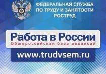 На портале «Работа в России» Тамбовская область предлагает более 2600 вакансий