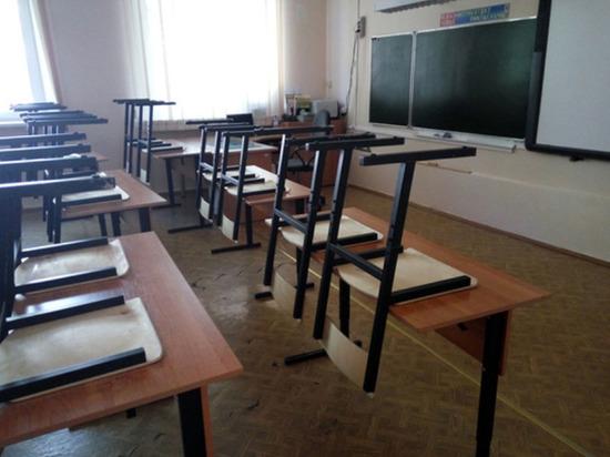 Коронавирус будет меньше угрожать школьникам, чем ОРВИ