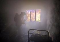В Смоленской области в пожарах в этом году погибли 43 человека