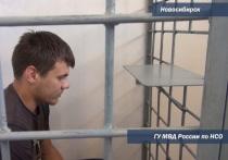 Грабителя из Новосибирска задержали во время сбора орехов на Алтае