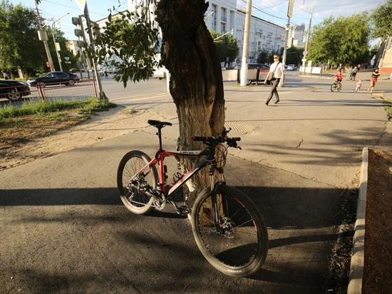 В Волгограде на улице Рабоче-Крестьянской дерево оказалось в асфальте
