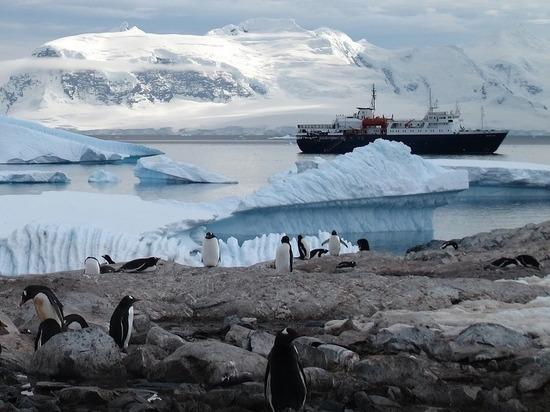 Ученые: Антарктида лишится ледового покрова к 2035 году