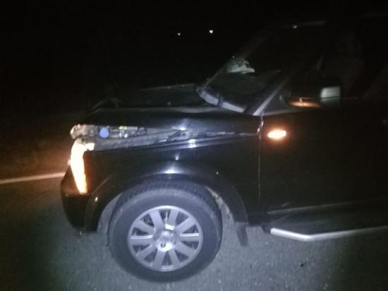 В Рязанской области москвич на «Лэнд Ровере» насмерть сбил пешехода