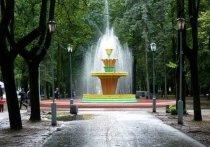 В дендропарке Пскова в этом году могут открыть фонтан