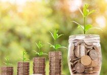 На Смоленщине снизилась процентная ставка за пользование потребительским кредитом
