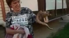 Сбежавший удав Анатолий «вышел» к соседям
