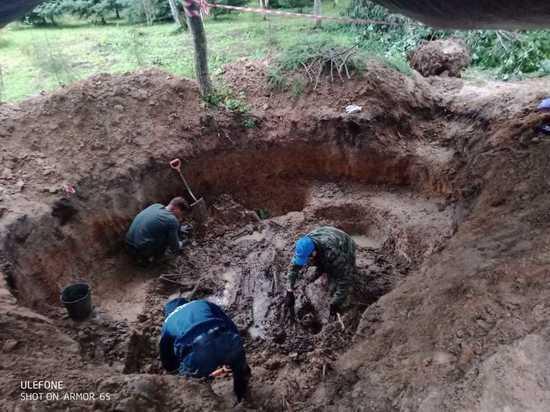 Останки целого отряда подростков, убитых в самом начале Великой Отечественной войны, обнаружены в Ленинградской области