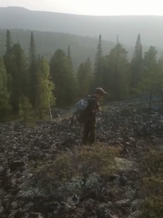 Поиски пропавшего в Бурятии самолета Ан-2: охотники услышали в лесу стук по металлу