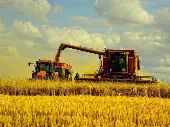 Что угрожает урожайности казахстанских полей