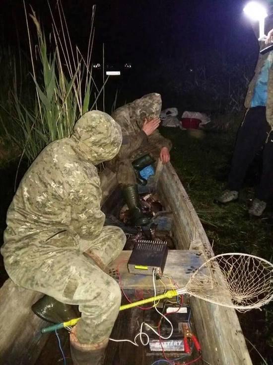 На казахстанских водоемах уничтожают целые популяции рыб