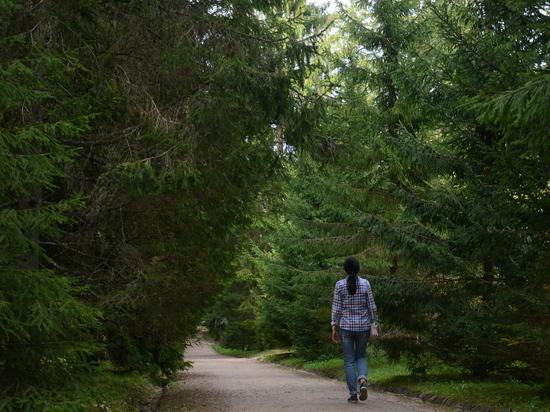 Каждый год в лесах Забайкальского края теряются десятки людей