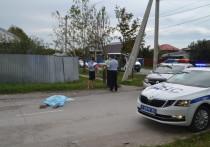 Стали известны подробности смертельного ДТП с КамАЗом под Новосибирском