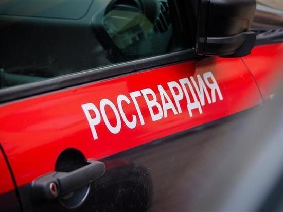 Брянские росгвардейцы задержали с поличным похитителей металлолома