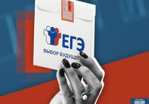 В Тверской области выявили четыре сайта с ответами на ЕГЭ