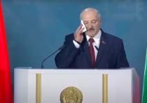 Белорусская оппозиция объявила сбор материалов для суда над Лукашенко