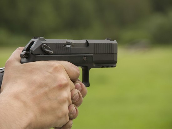 В России для полиции разработали миниатюрный пистолет «Полоз»