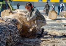 Жители Нового Уренгоя увидят воочию создание деревянных скульптур