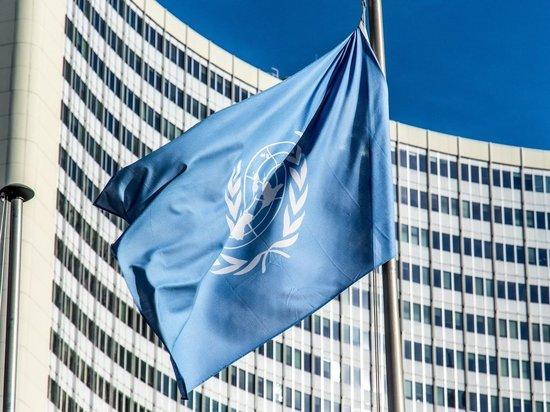 СБ ООН отклонил резолюцию США о продлении оружейного эмбарго против Ирана