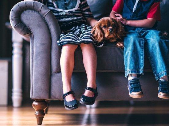 В Минпросвещения рассказали, когда возможны изъятия детей из семьи