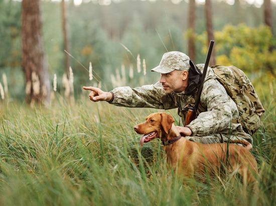 В Тверской области началась охота на дичь