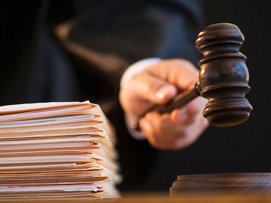Чиновница из Тупика не смогла засудить «Землю» за критику