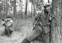 Неизвестные факты о белорусских партизанах: сражались не только за СССР