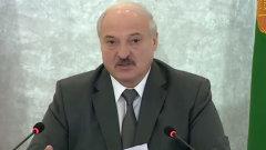 Появилось видео Лукашенко, предлагающего оппозиции метлы