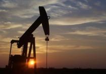 Нефть на пороге новых катаклизмов: «черные лебеди» готовы заклевать баррель
