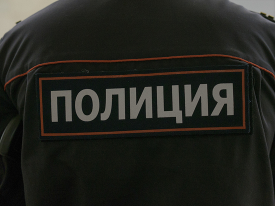 Задержанного в Белорусии украинца разыскивают в России за кражу