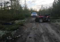 Под Новым Уренгоем водитель снегоболотохода погиб в ДТП