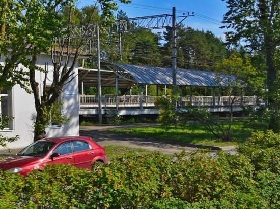 Пенсионер погиб под поездом на пешеходном переходе у станции Комарово