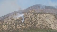 В Краснодарском крае тушат заповедник Утриш и ещё три лесных пожара