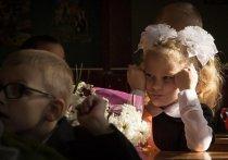 От дистанционного обучения, по крайней мере осенью, в России решено отказаться