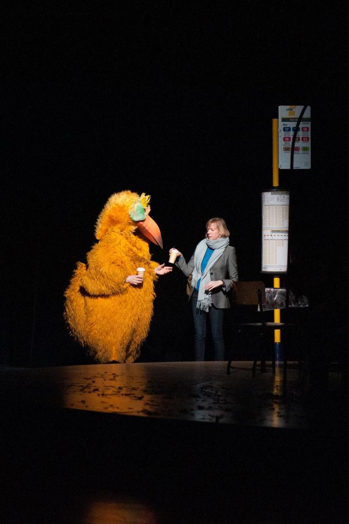 Эдинбургский фестиваль открыл театральный онлайн-зоопарк